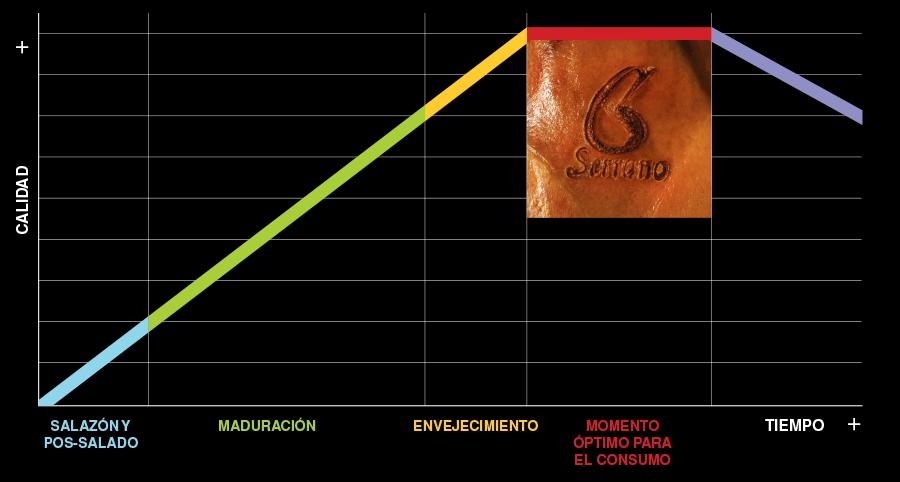 garantia-de-calidad-grafico